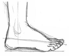 рисуем ступню