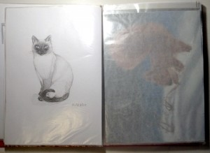 Хранение рисунков пастелью
