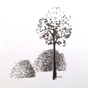 деревья скетч